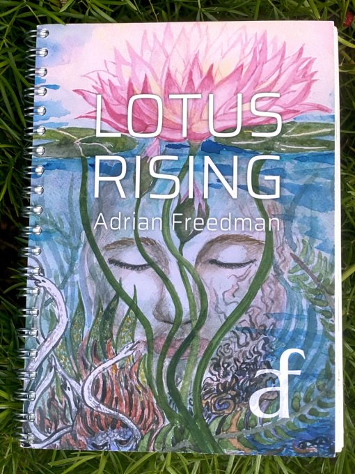 |therapeutic music cover art of song book|therapeutic music songbook astral hearts page|Painting of Lotus Hummingbird by Noriko Moonbird