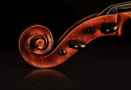 Cello Scroll Closeup. Image supplied by the musician.