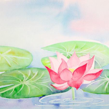 Noriko Lotus Rising