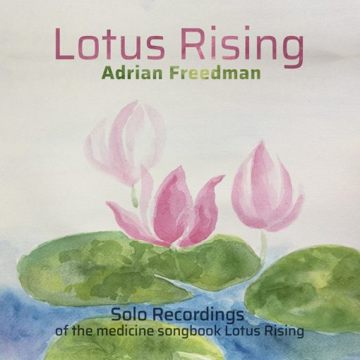 Lotus Rising by Adrian Freedman