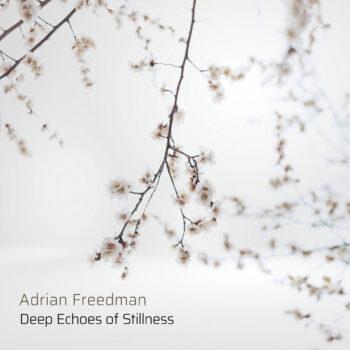 Deep Echoes of Stillness - Adrian Freedman